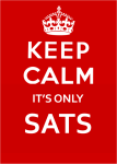 keep-calm-it-only-sats11