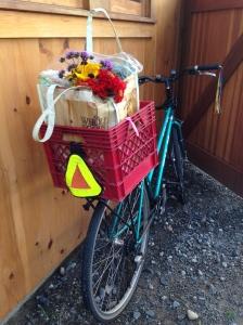 Bike at farm